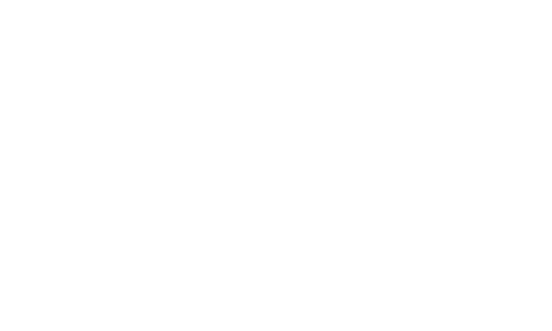 chartered_accountants CA logo